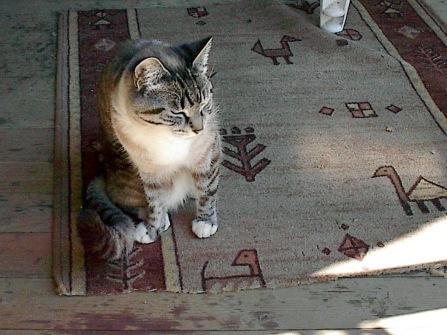Première photo: 2001/07/02