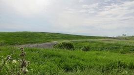 Les vertes collines...