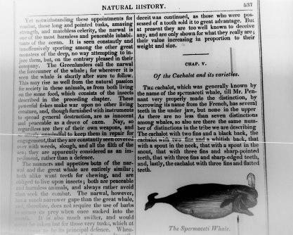 UdeM copy (b), page 537