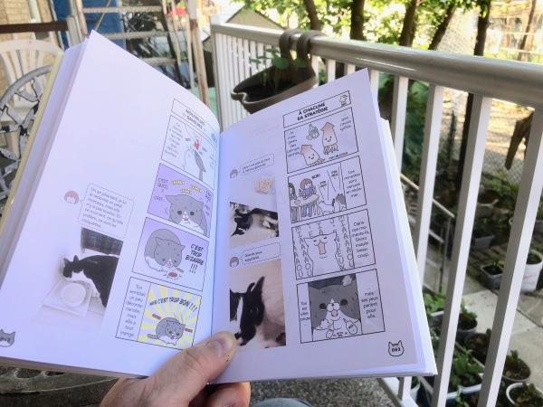 Manga au jardin