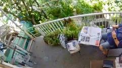 Lire dans le jardin / read in the garden
