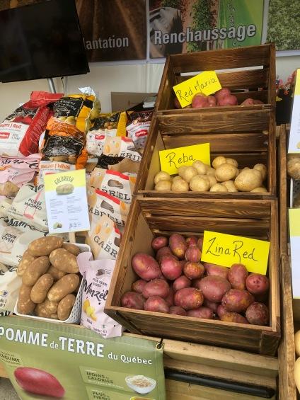De nombreuses variétés de patates