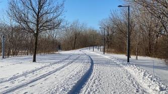 un parc en hiver
