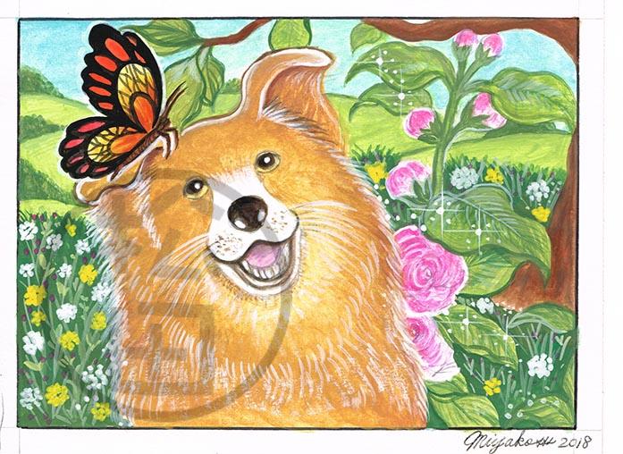 AltheaRosea-BrownDog-Butterfly