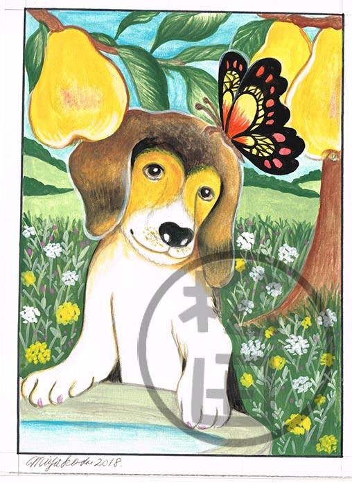 Pears-Beagle-Butterfly-LowResWM