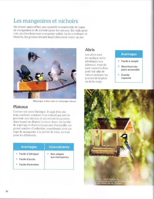 100PlusBeauxOiseaux-p016