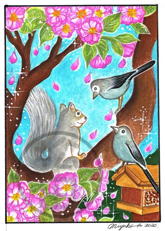 SquirrelJuncoAndCherryBlossomsLowResWM